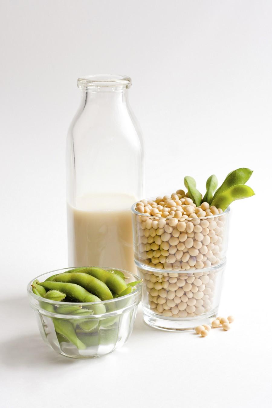 Sója – vzácna plodina pre vegetariánov & obrovská hrozba pre spoločnosť